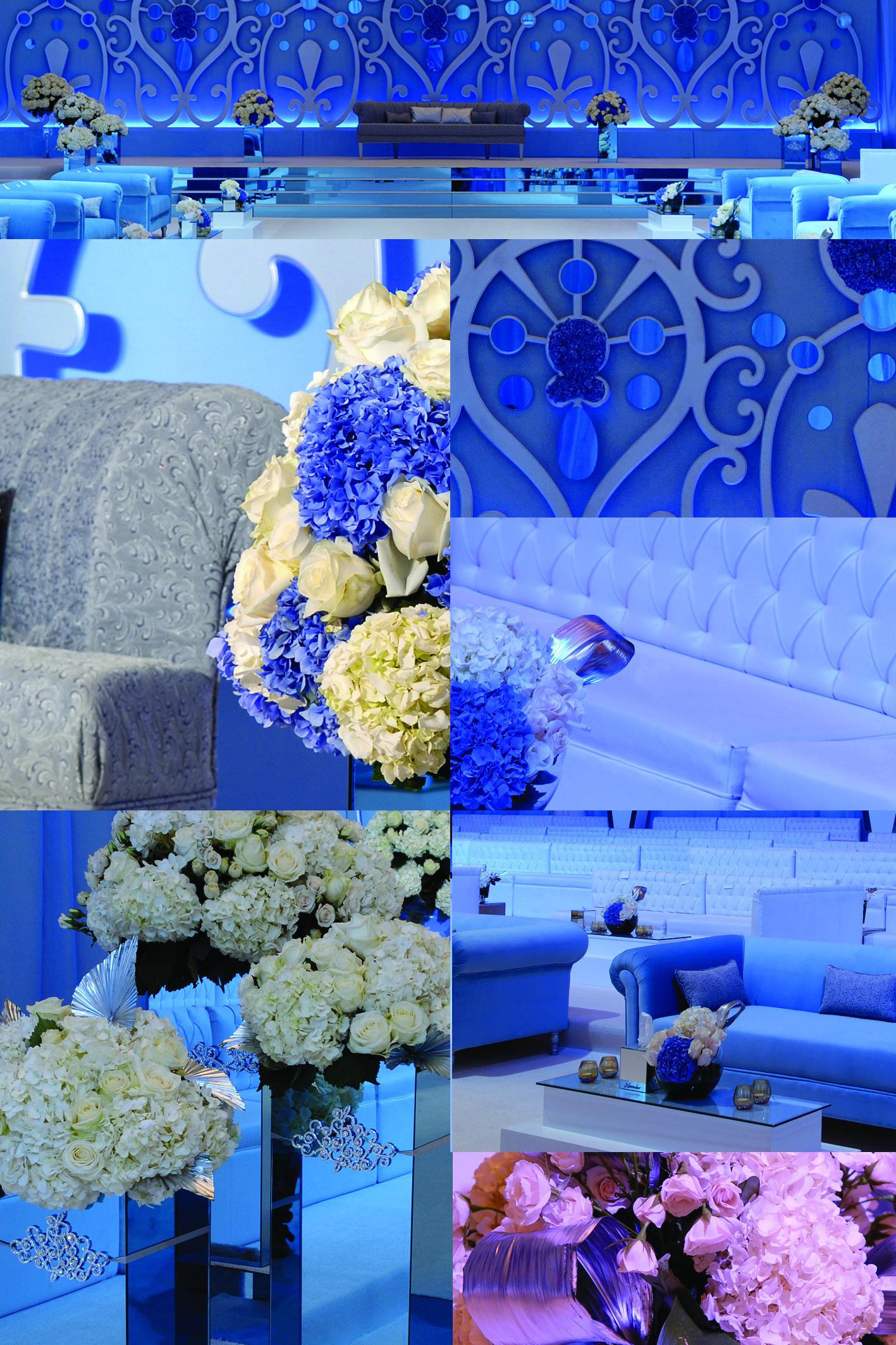 Elegant and Blue