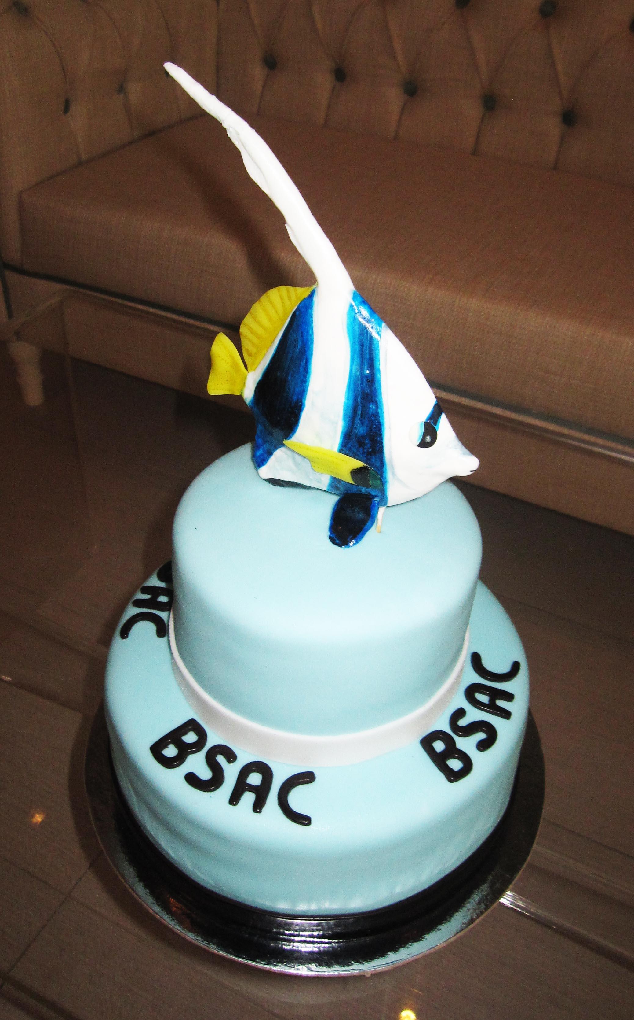 Cake of the Day The November Company